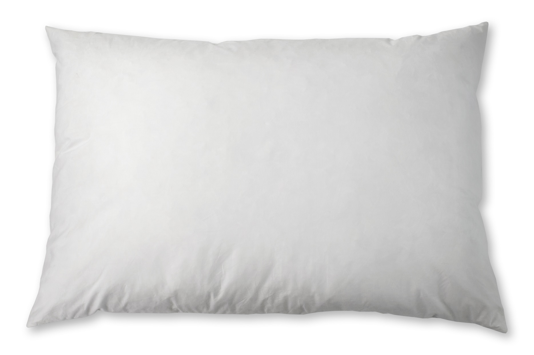 "Pillow Insert Duck 95/5 Feather/Down 12""x22"""